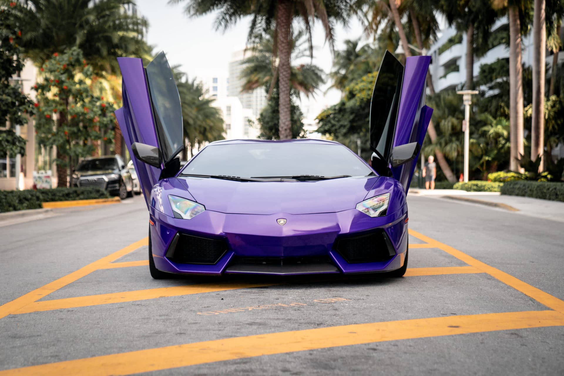 2016 Lamborghini Aventador Roadster Novitec   Miami, FL